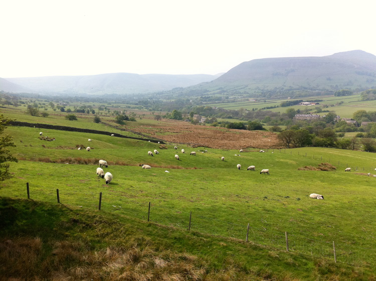The Edale Valley looking very spring-like. Copyright Haydn Williams 2011.