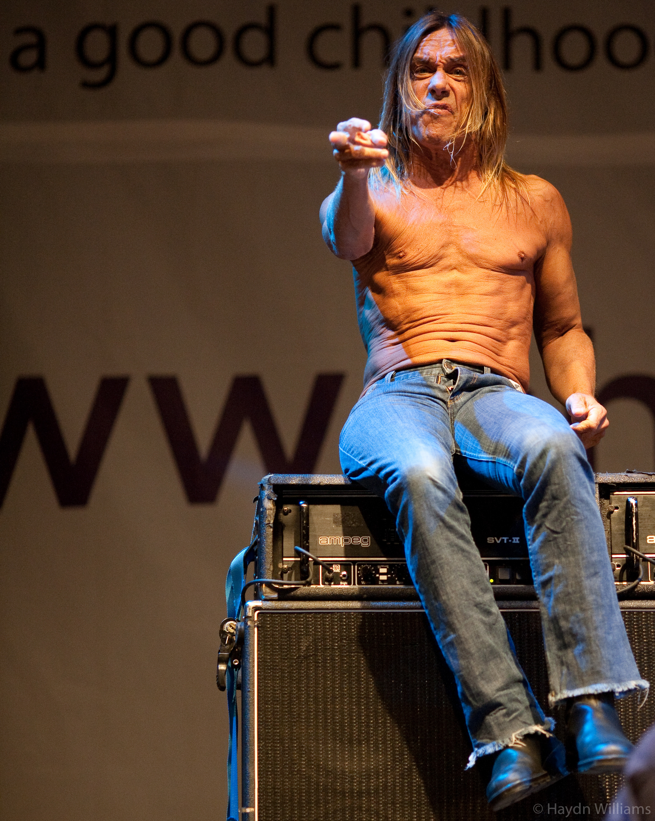 Iggy and the Stooges - Harewood House, Leeds - August 2007. ©Haydn Williams 2008
