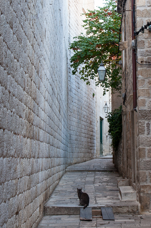 Below the city walls. ©Haydn Williams 2017
