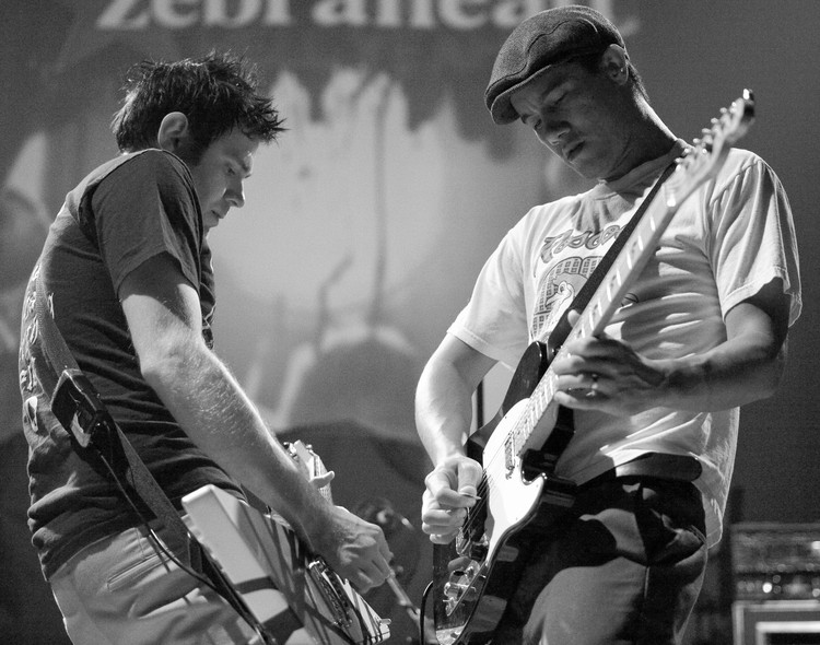 Zebrahead. Copyright Haydn Williams 2009.
