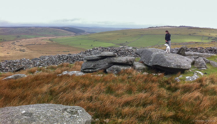 Atop Stowes Hill on Bodmin Moor, having visited the Cheesewring. © Haydn Williams 2013
