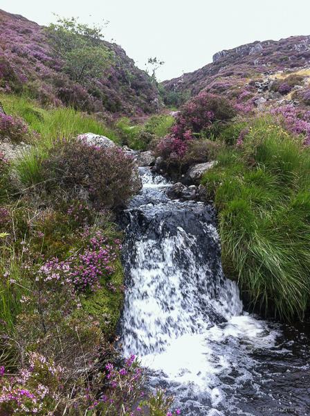 Very scenic. Must keep running. © Haydn Williams 2013
