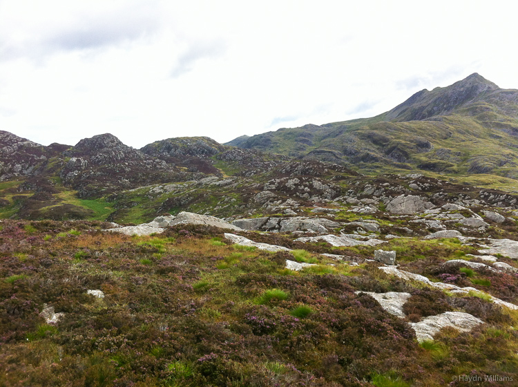 Head the summit on the left, then follow the rib to the summit of Cnicht. No, there isn't a path. © Haydn Williams 2013