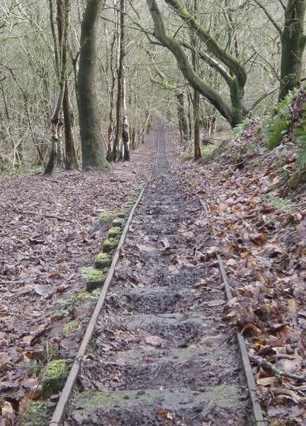 Looking down the tracks. I wish this photo did the angle justice. ©Haydn Williams 2014