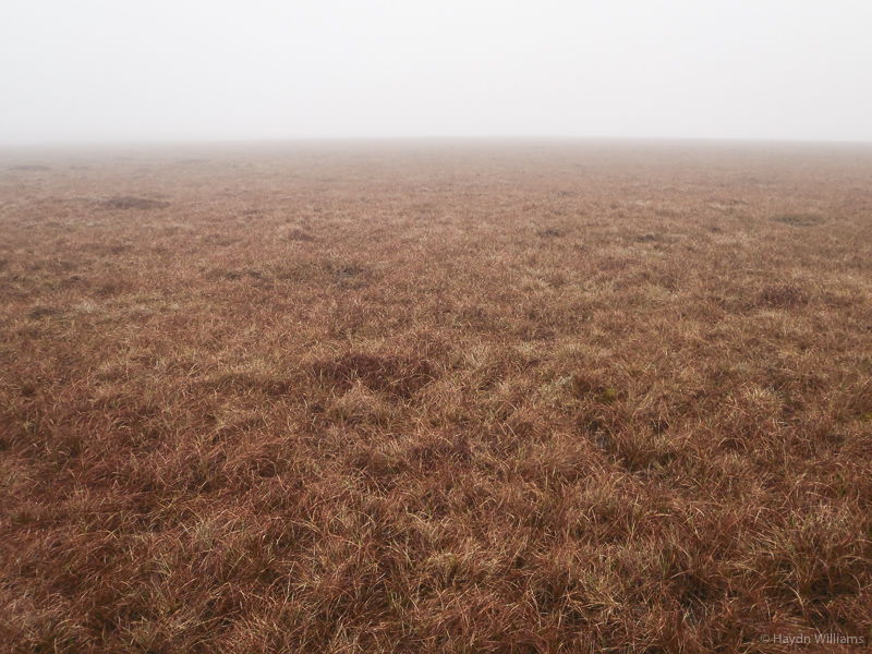 Bleaklow. Doesn't give you much to work with. © Haydn Williams 2015