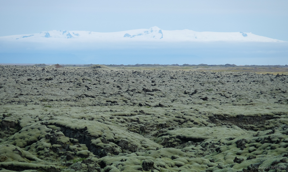View across a mossy lava-field to Europe's largest glacier, Vatnajökull. © Haydn Williams 2015