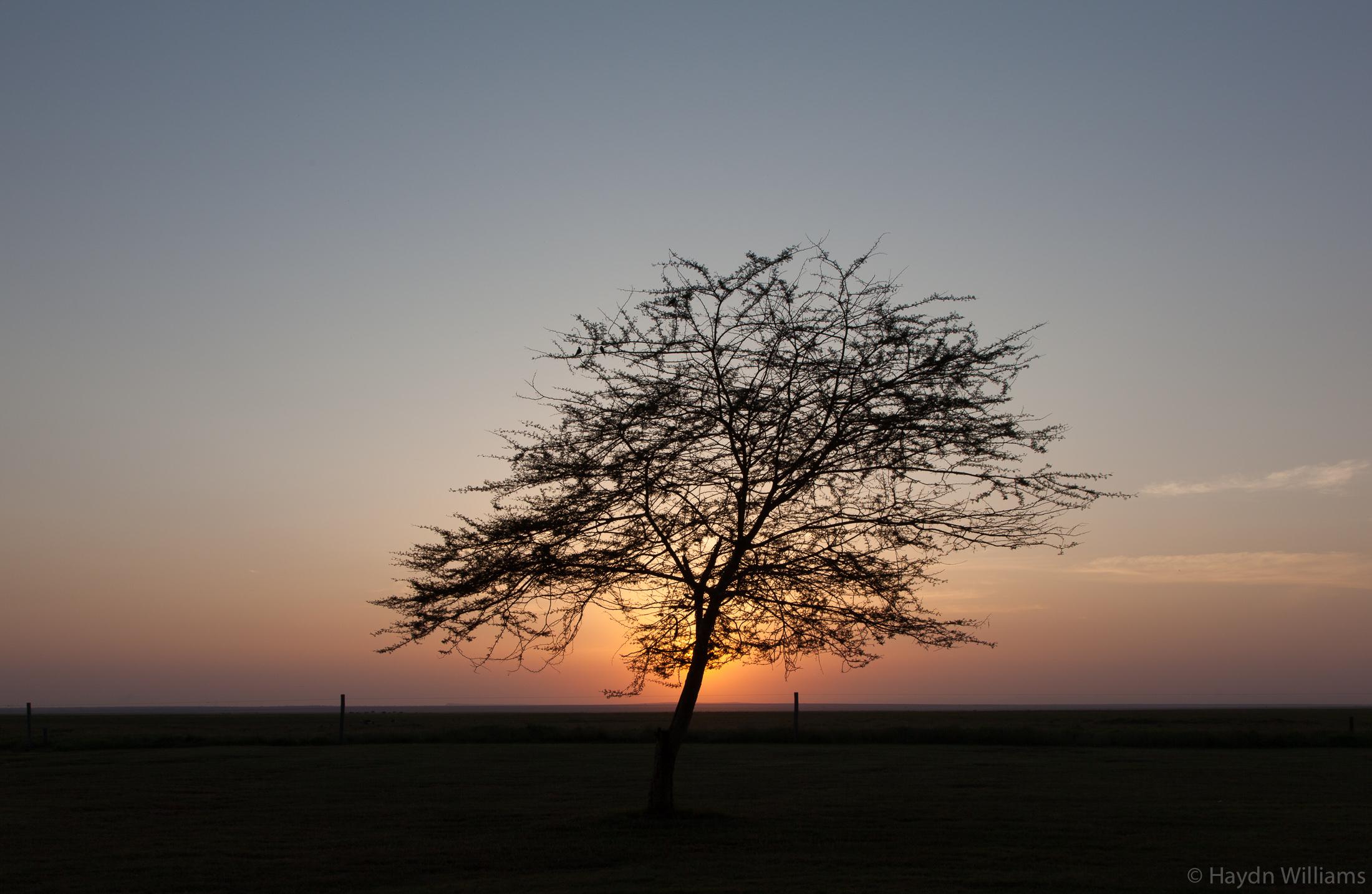 Sunrise at Ol Tukai Lodge. © Haydn Williams 2019
